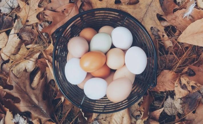 Proste Przepisy Wielkanocne Moje Typy Rozterki Startuperki
